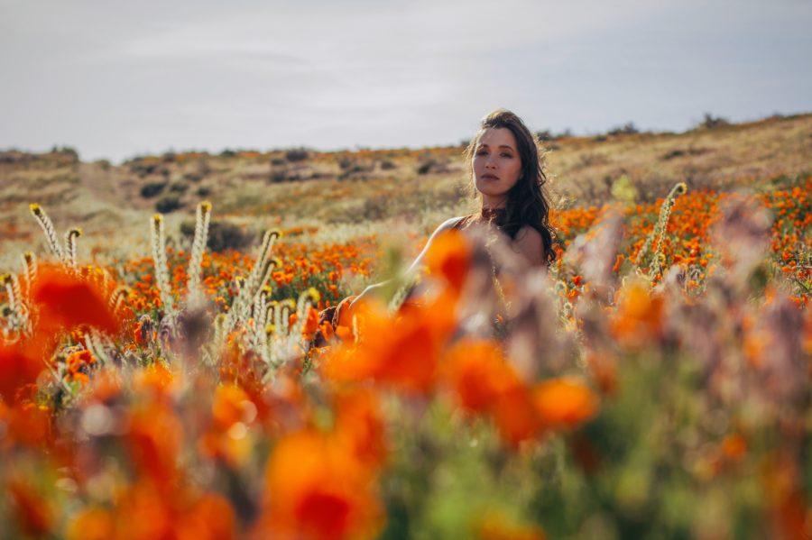 Shea Antelope Valley Orange 2