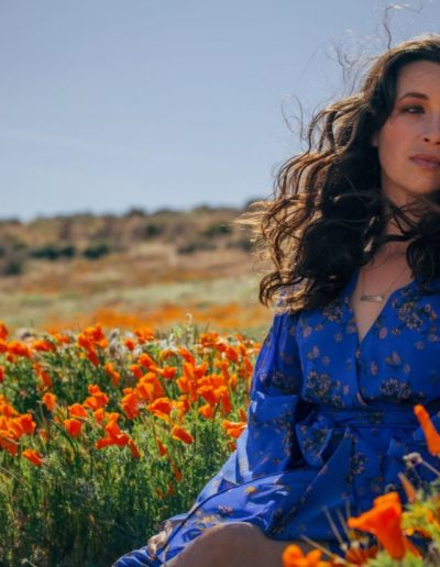 Shea Antelope Valley Blue 2